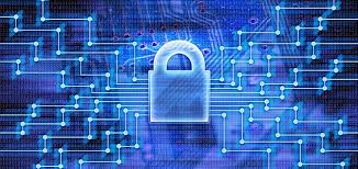 Government executives have low confidence in cyber security measures