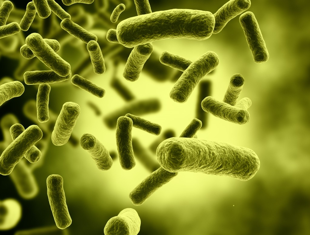 Flesh-eating bacteria kills man after only four days