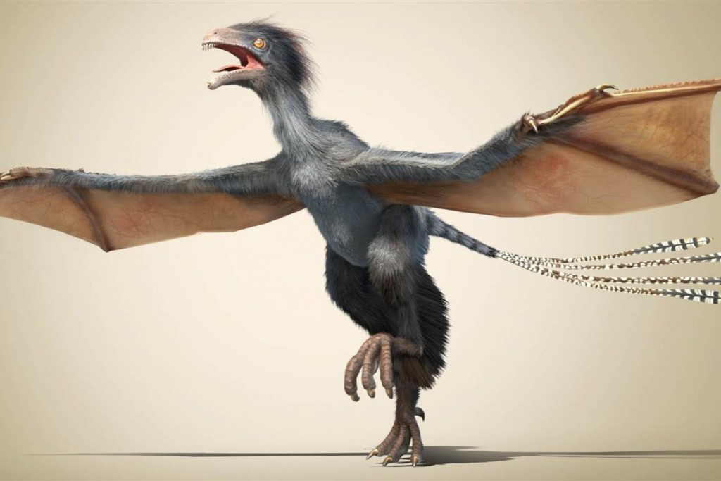 Strange fossils reveal existence of Bat-like winged Dinosaur