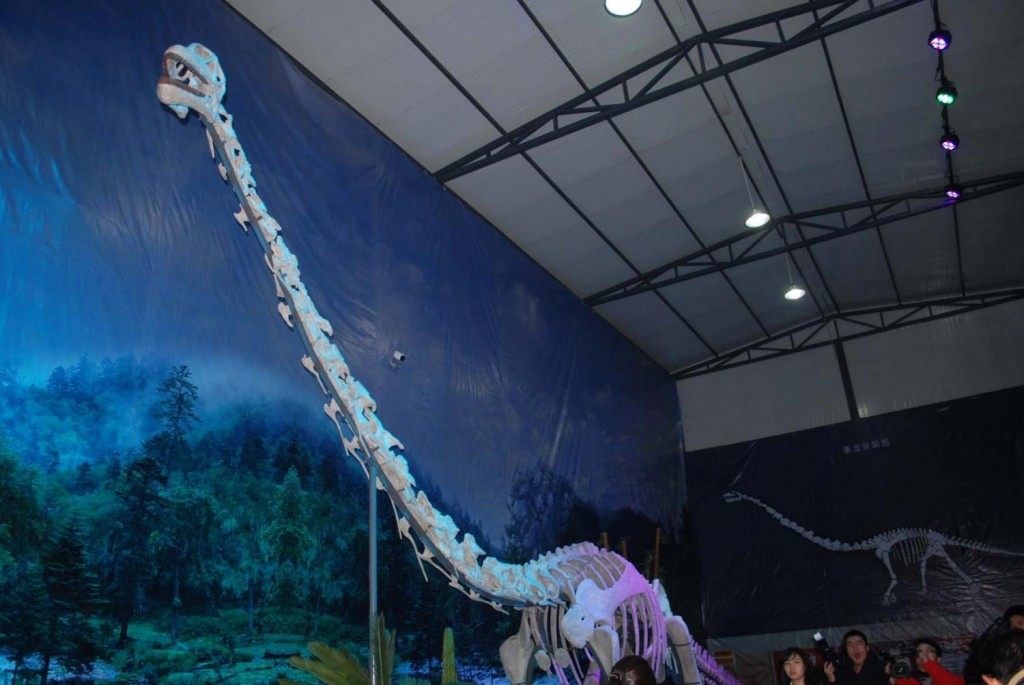 160 million year old dinosaur with unusually long neck discovered in China