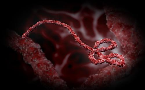 Why unprotected sex may not be right for Ebola survivors