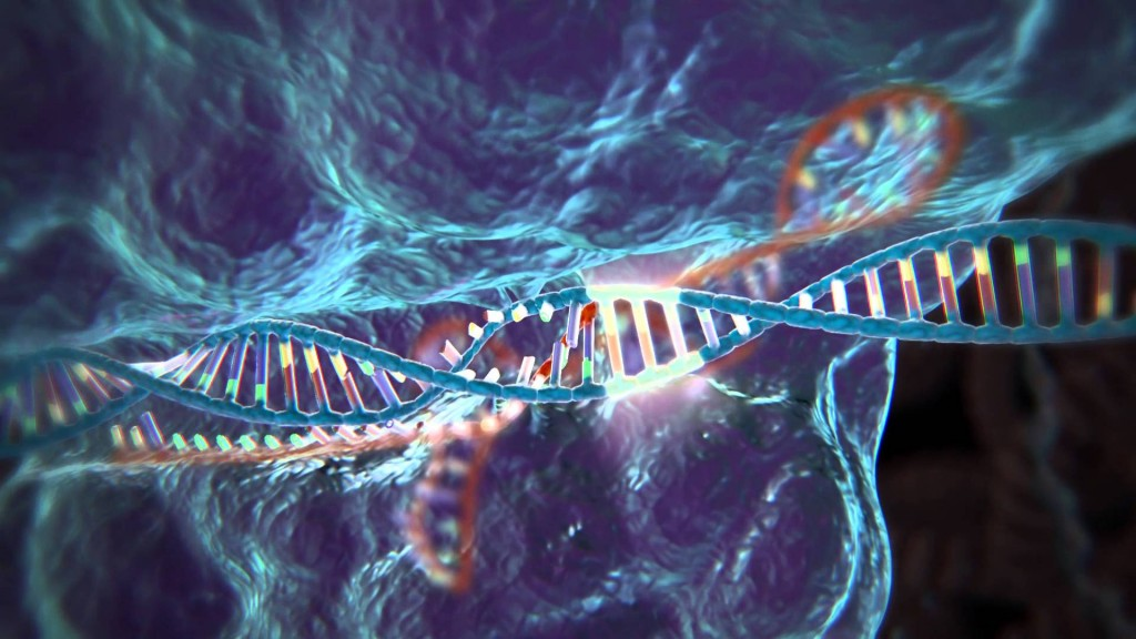 Scientists set to work out guidelines for CRISPR-Cas9 gene editing initiatives