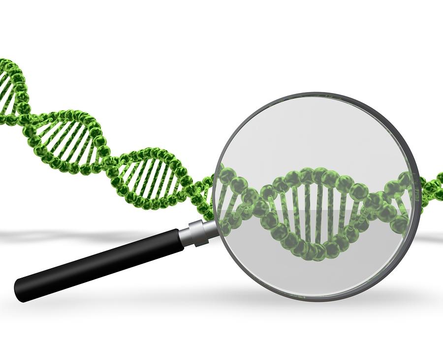 Chinese researchers lead CRISPR-Cas9 gene-editing tests, U.S. to follow