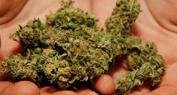 Scientists make shocking marijuana discovery